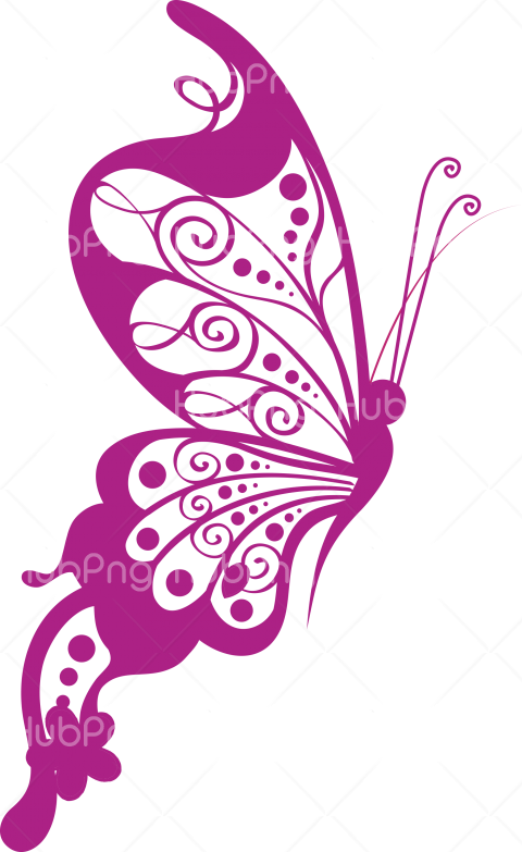 purple butterfly png clipart Transparent Background Image for Free