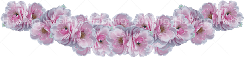 purple flower crown png Transparent Background Image for Free