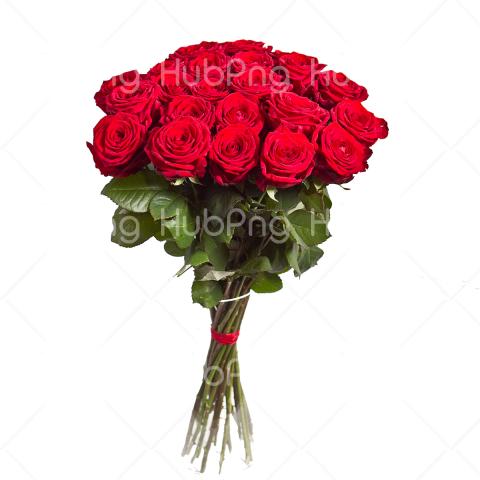 Red bouquet flowers PNG image  transparent background Transparent Background Image for Free