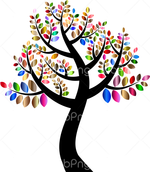 tree png clipart color Transparent Background Image for Free