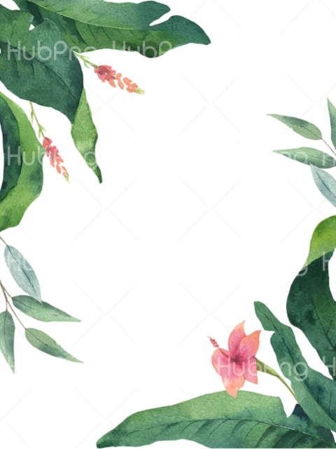 tropical png flowers Transparent Background Image for Free