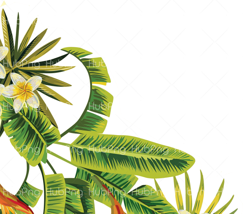 tropical png leave Transparent Background Image for Free