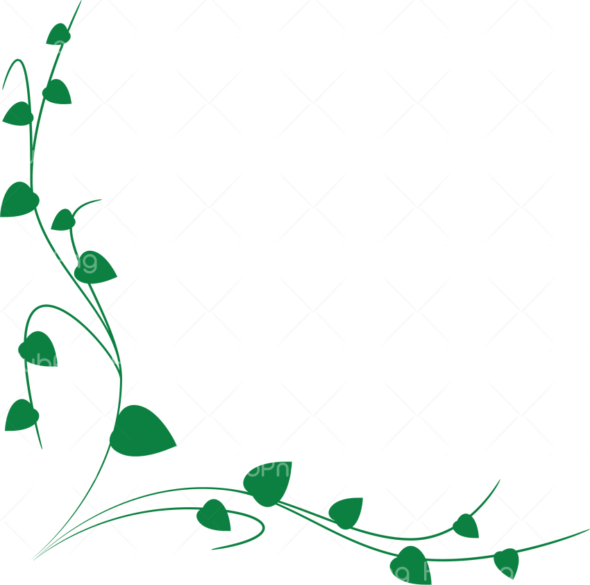 vines png green branch Transparent Background Image for Free