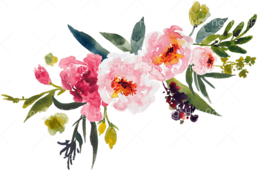watercolor flower png clipart Transparent Background Image for Free