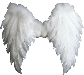 angel wings png, alas de angel, ангельские крылья, Engelsflügel ailes d'ange, ali d'angelo png HD