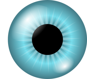 baby blue eye png