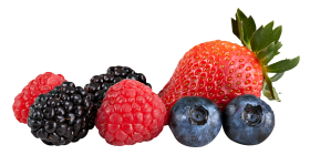 Berries png HD clipart