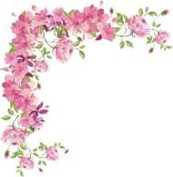 borders png flower pink hd