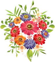 Bouquet flowers PNG image