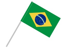 brazil flag png vector