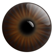 brown eye png hd