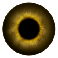 brown eyeball png