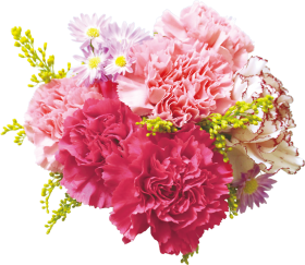 bunch of flowers png