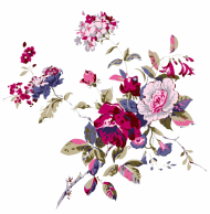 Chinese Flower PNG Transparent Image