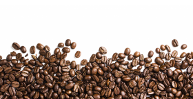 clipart coffee bean  PNG