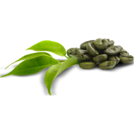 coffee beans png green