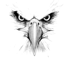 eagle png head hd