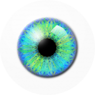 eyeball png clipart hd