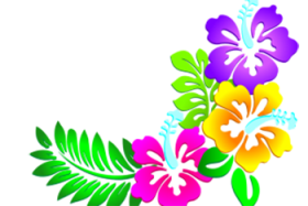 flores png hd clipart