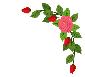 flower border png vector