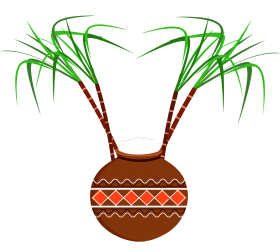 flowerpot carrot-plant for pongal png