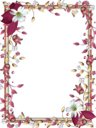 frame png hd flowers