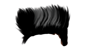 hair boy hear png