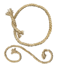 knot rope png