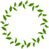 leaves png hd