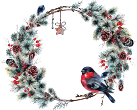 pine christmas clipart png