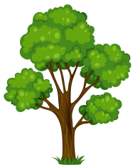 plants png clipart cartoon