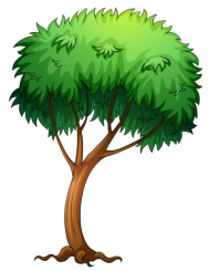 plants png vector
