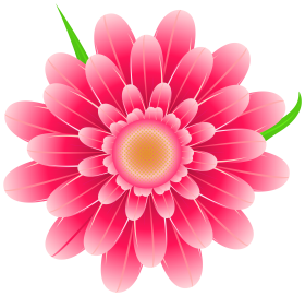 png flower vector