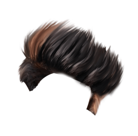 png hair style photo