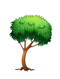png tree vector