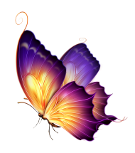 purple butterfly png coloers