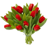 red with green Bouquet flowers PNG