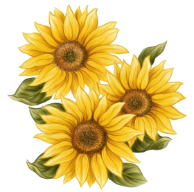 sunflower png paint