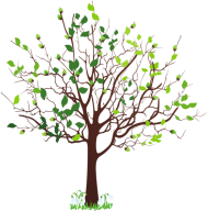 tree png clipart hd